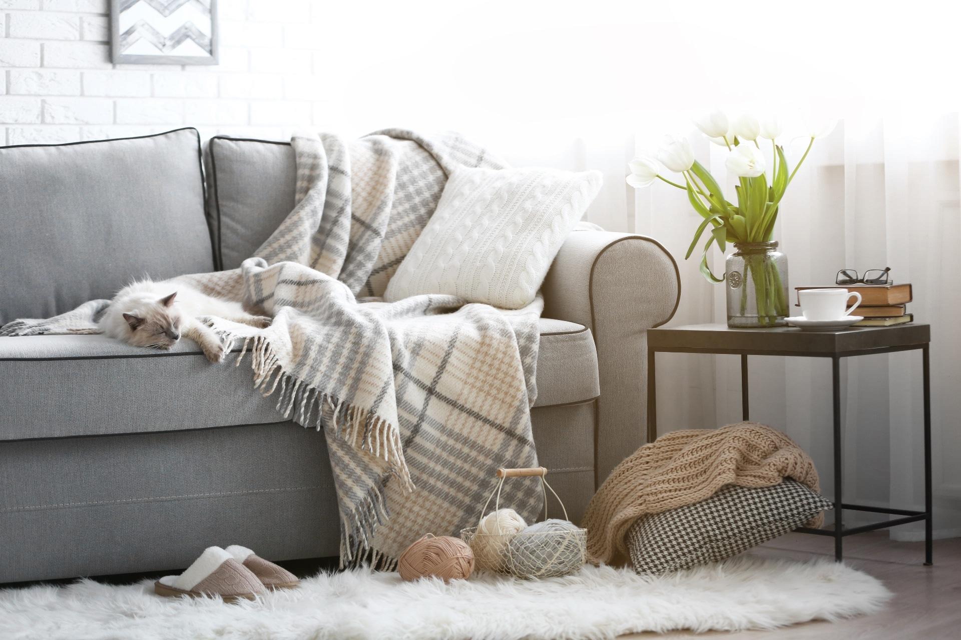 Living Room Winter Throws Pillows Carpets Kristine Bonnici Design